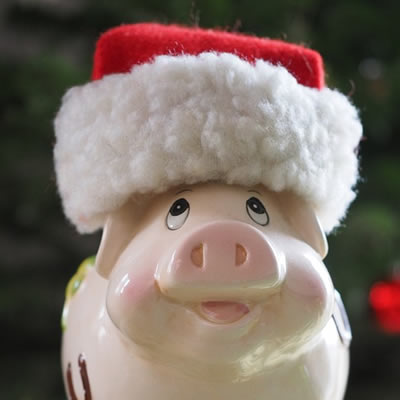 Pig with santa hat
